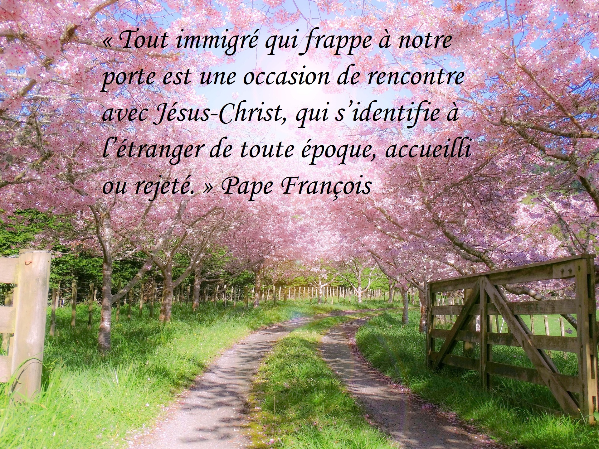 1_CitationPape
